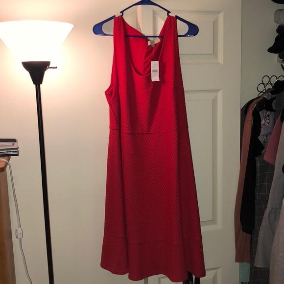 LOFT Dresses & Skirts - NWT Loft Textured Red Dress